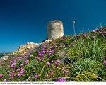 Residence Borgo Di Mare, Olbia,Sardinija - last minute počitnice