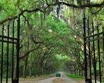 Best Western Central Inn, Savannah - namestitev
