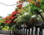 Nitzana Mauritius, Port Louis, Mauritius - namestitev